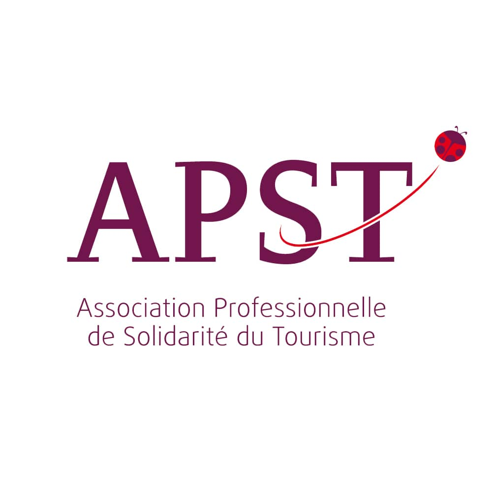 https://revlys.fr/wp-content/uploads/sites/2/2019/06/APST-logo-revlys.jpg