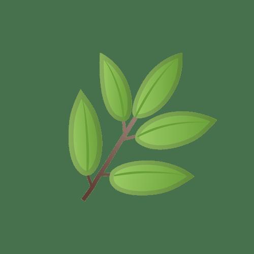 https://revlys.fr/wp-content/uploads/sites/2/2020/10/plante-carbone-neutre-revlys.png